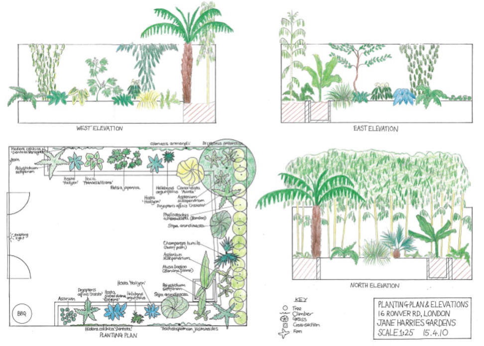 Example planting plans for Garden design planting schemes