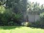 Exotic shade planting