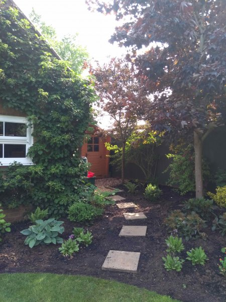Path to the shed and planting